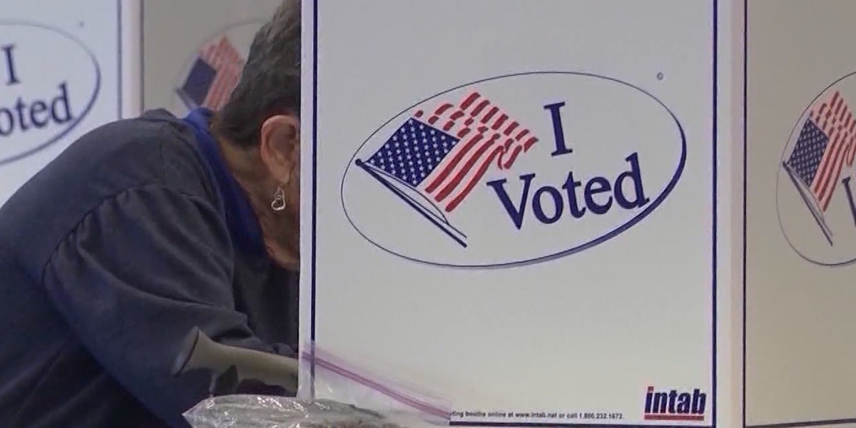 Sample ballot: Here's everything Mississippians will vote for in November