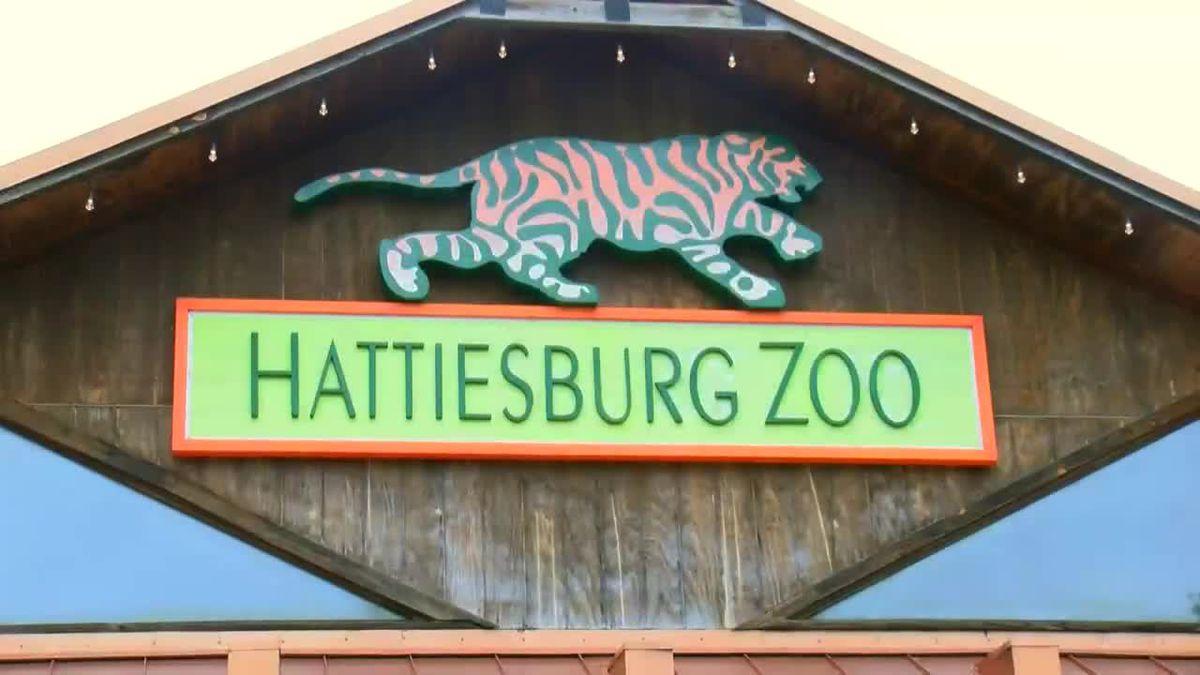 Hattiesburg Zoo to stage 'Sensory Sunday'