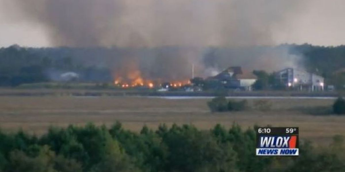 Massive fire covers 50+ acres on old Coca-Cola plantation property