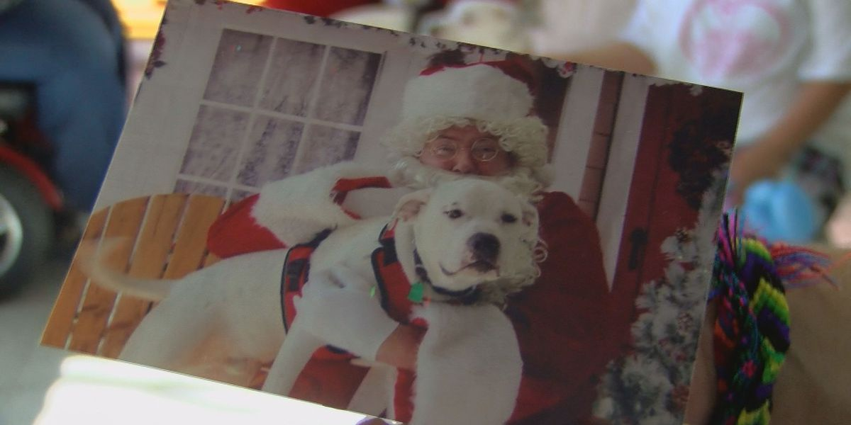 Community Christmas party raises money, awareness for Pink Pawz