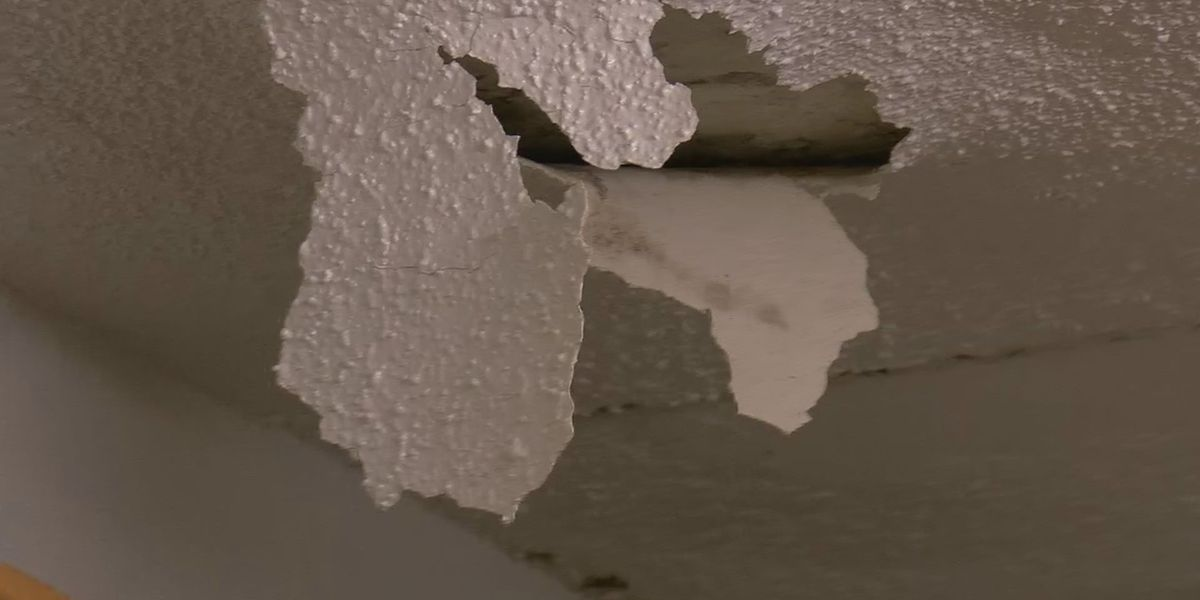 Residents complain of black mold, faulty repairs at Gulfport apartment complex