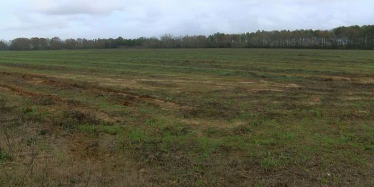 Wood pellet plant could still be in George County's future