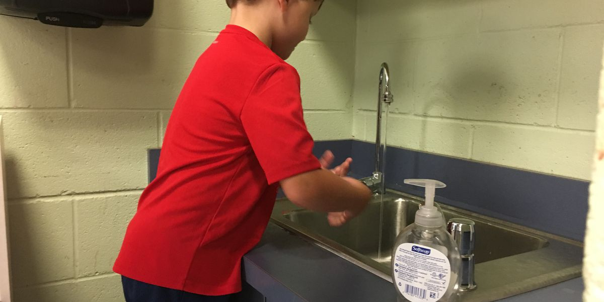 'I pretty much douse everything in Lysol': Teachers and faculty fight off back-to-school germs