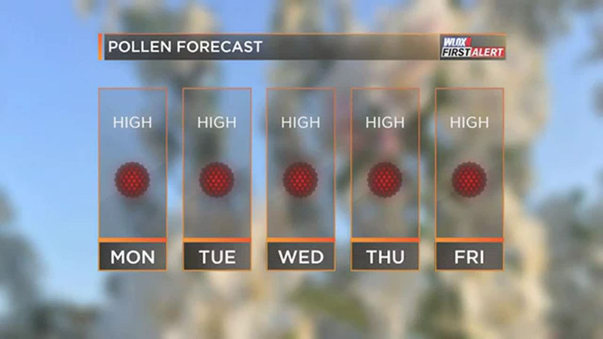 FORECAST VIDEO: 3-18-19 High pollen levels all week. No rain relief.