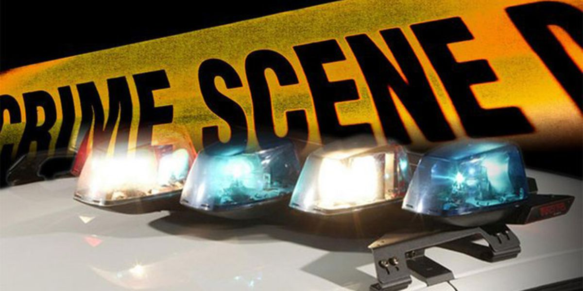 Police: 11-year-old arrested; tied to 22 car break-ins