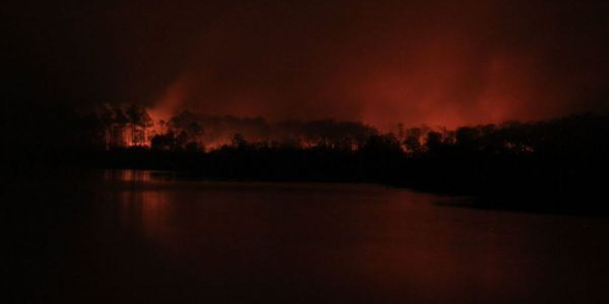 Fires continue to blaze across South Mississippi; 4,000 acres affected