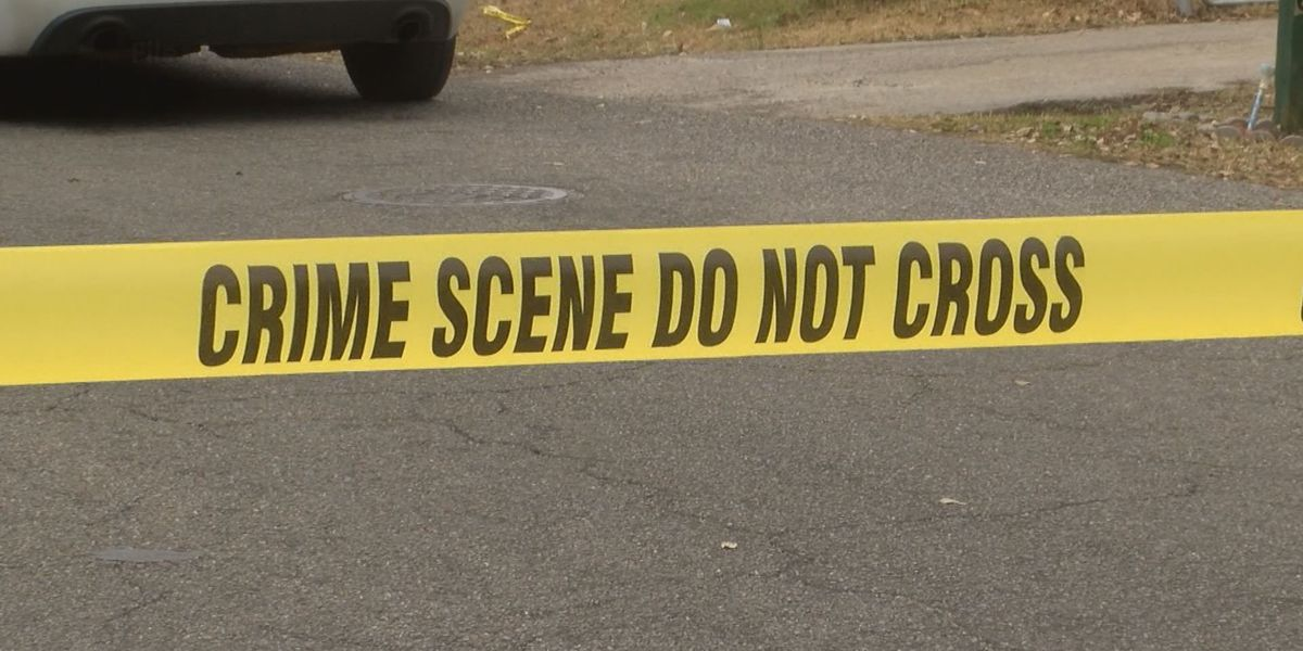 Gulfport group to celebrate lives of Coast homicide victims