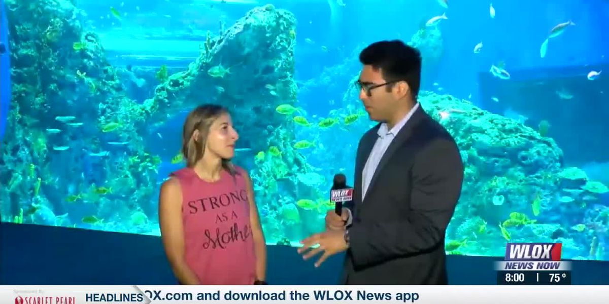 LIVE REPORT: Mississippi Aquarium hosts special Mother's Day event