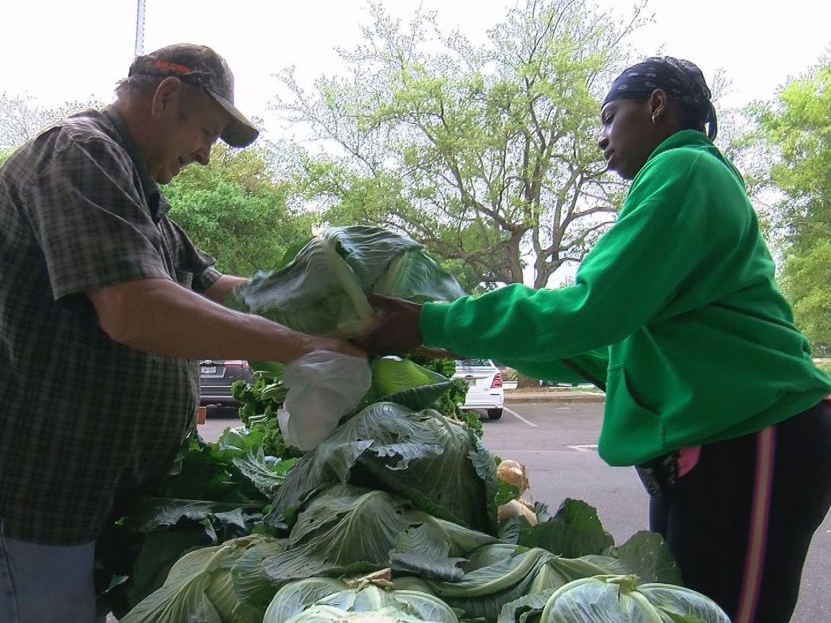 Biloxi Farmers Market back open with restrictions