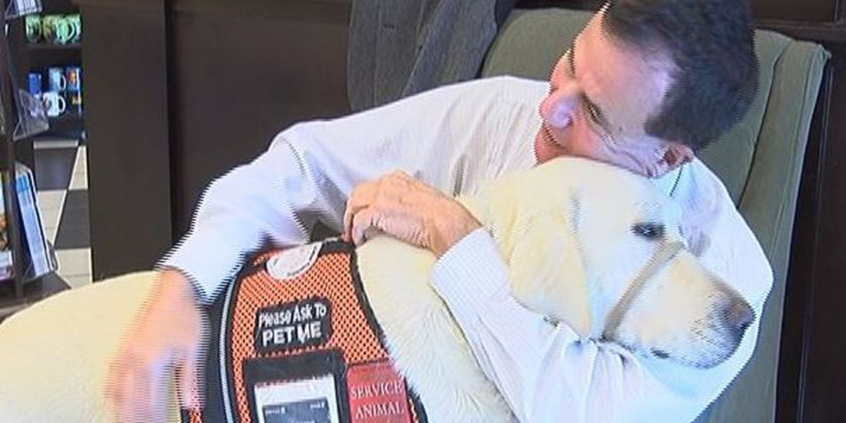 Pass man uses airline access problem to promote use of service dogs
