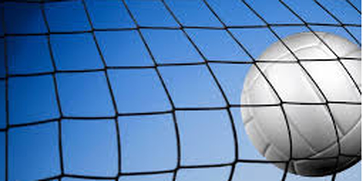 Three of the four Coast volleyball teams advance to the State Finals on Saturday at MSU
