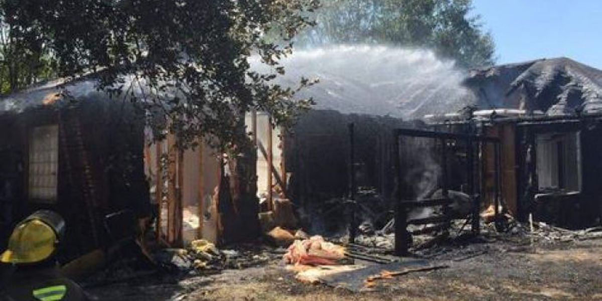 Contractor and firefighter help save dogs from burning home