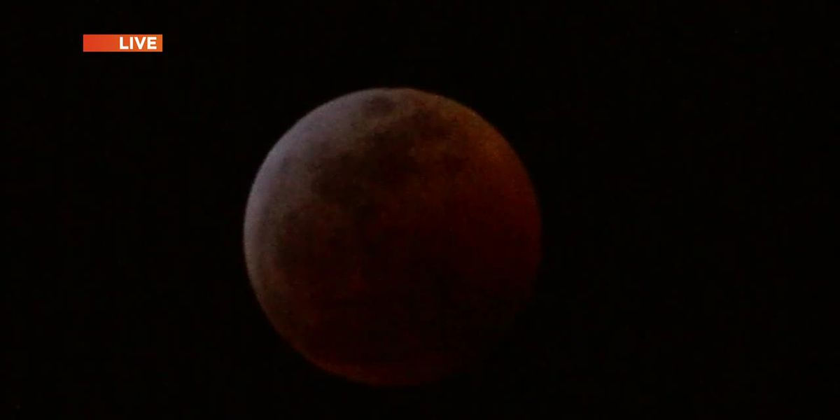 Blood Moon over South Mississippi Jan 20, 2019