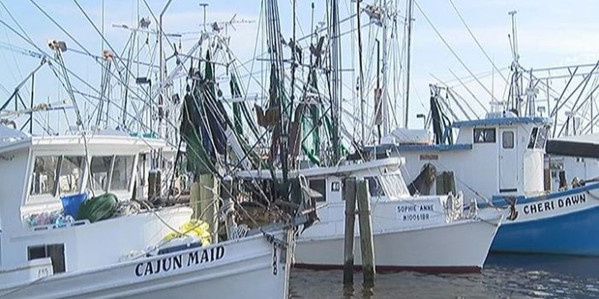 Shrimpers say blessing of the fleet is especially needed this year