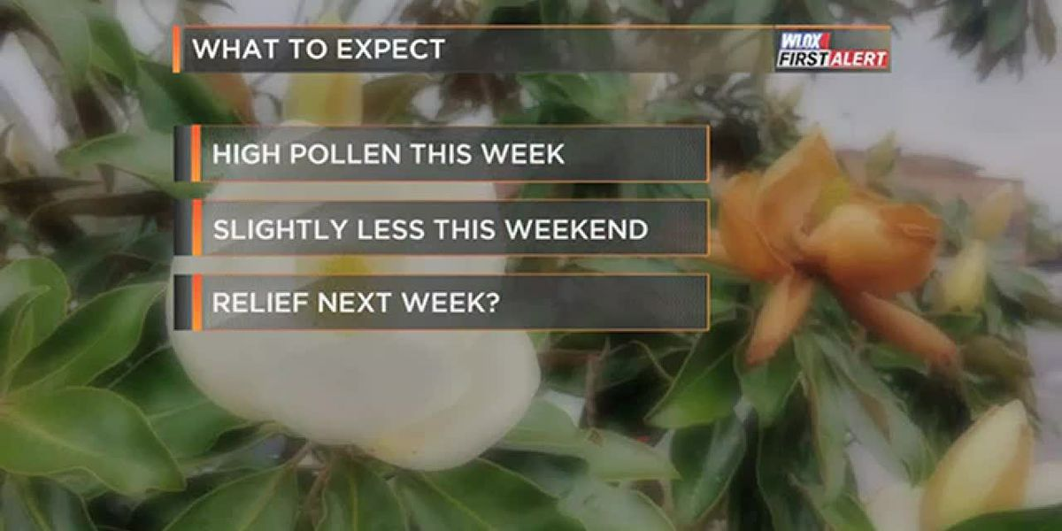 FORECAST VIDEO: 3-20-19 High pollen this week. Relief next week?
