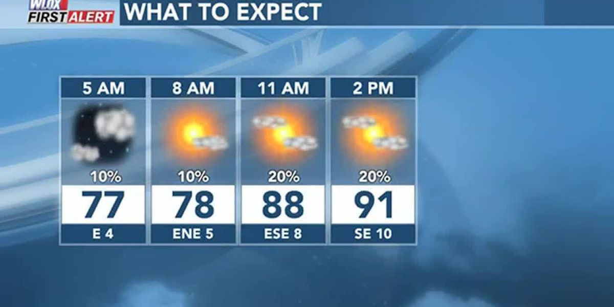 FORECAST VIDEO: Hot today. Wetter weekend watching tropics in the Gulf.