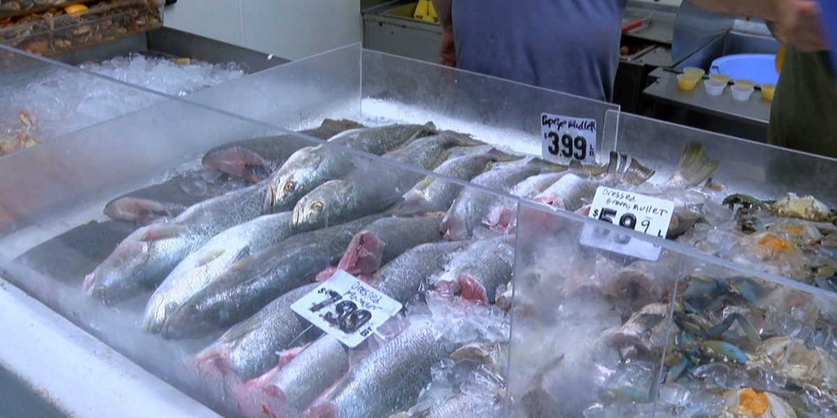 Gov. Bryant backs DMR statement that seafood caught locally offshore is safe to eat