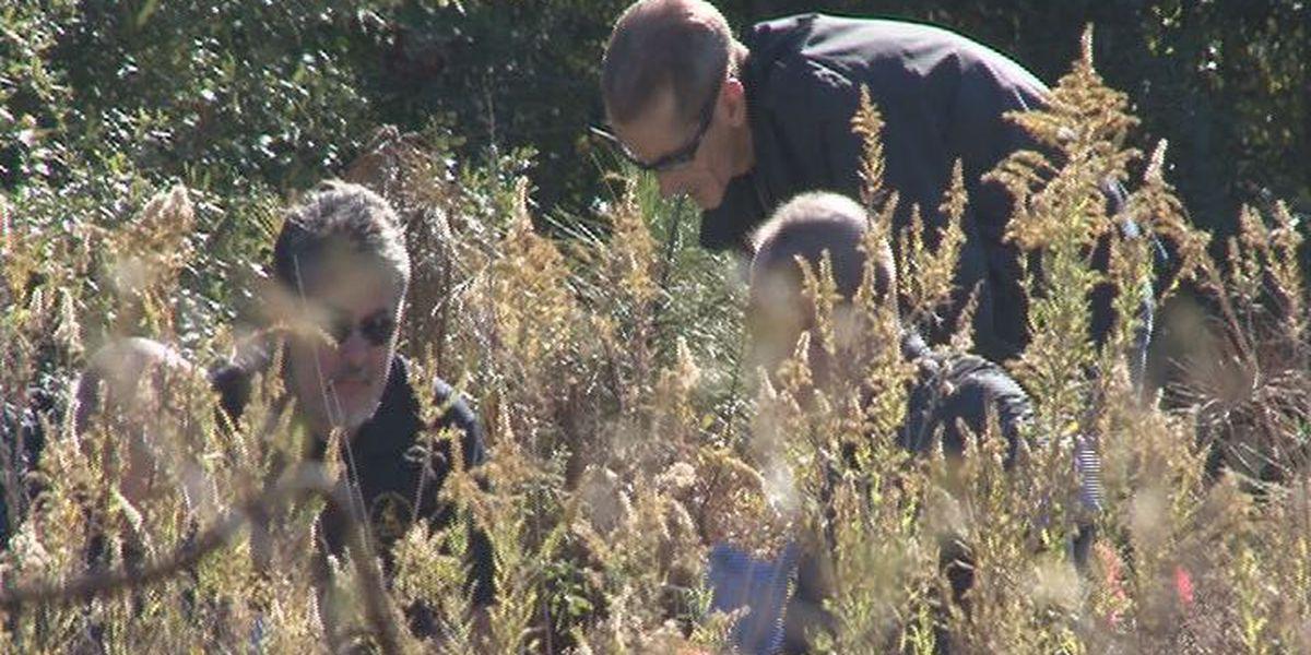 Investigators working to determine ID of skeletal remains