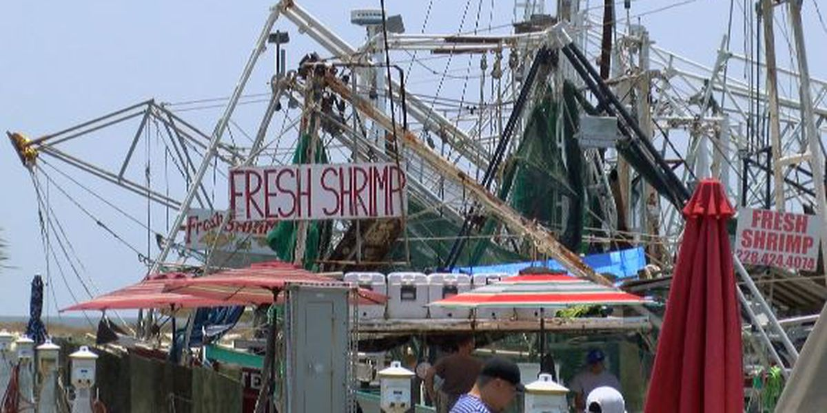 Freshwater intrusion not a problem for some Coast seafood purveyors and restaurateurs