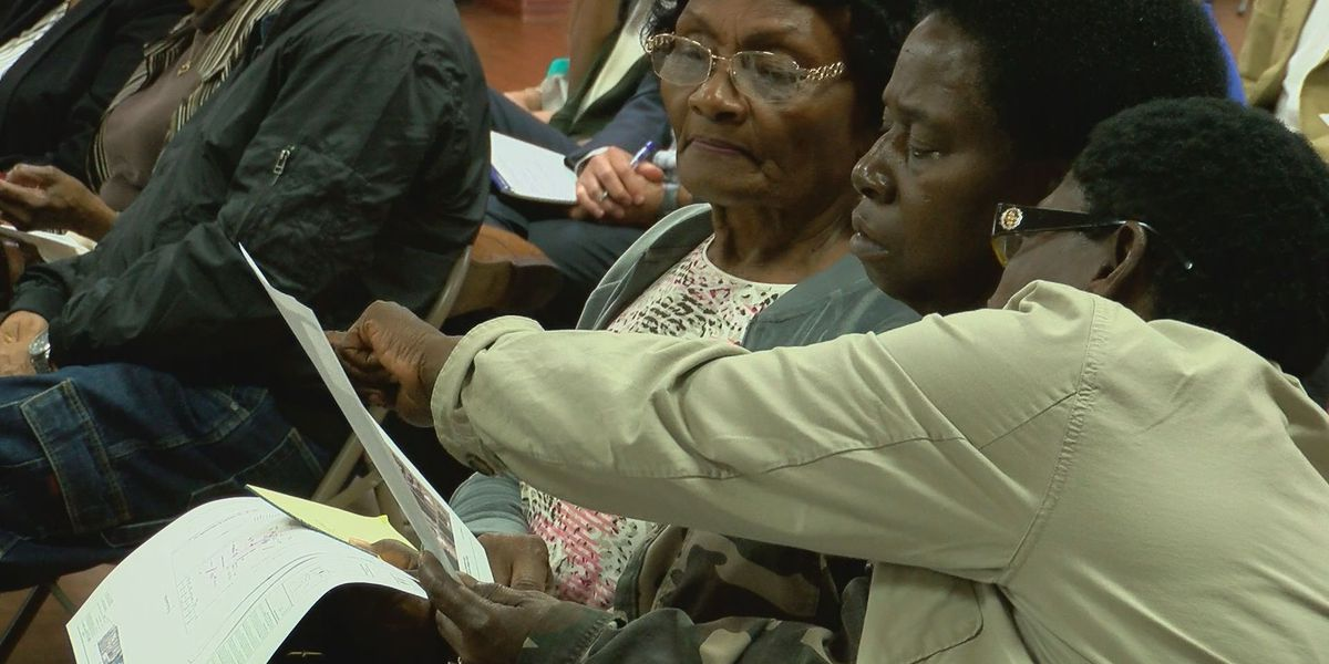 North Gulfport groups gear up for wetlands appeal