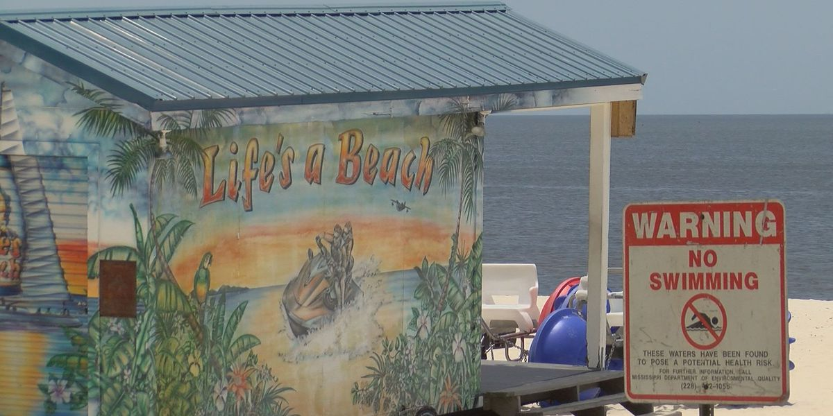Algae bloom impacts beach vendor's business by 'almost 100 percent'