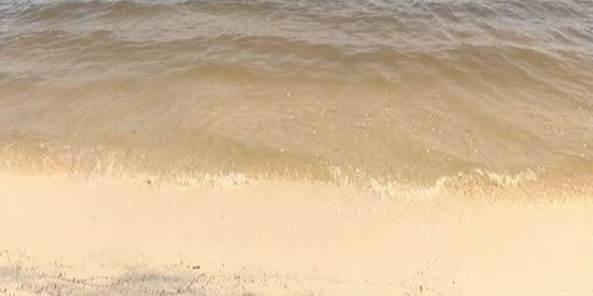 MDEQ reopens beaches as red tide subsides