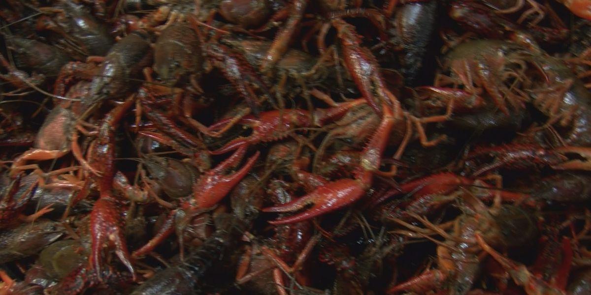 Louisiana seafood labeling bill clears hurdle