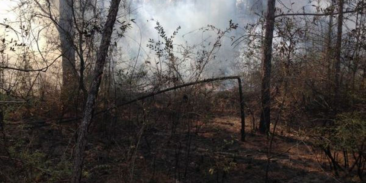 Expect to see more smoke in the skies above Jackson Co.