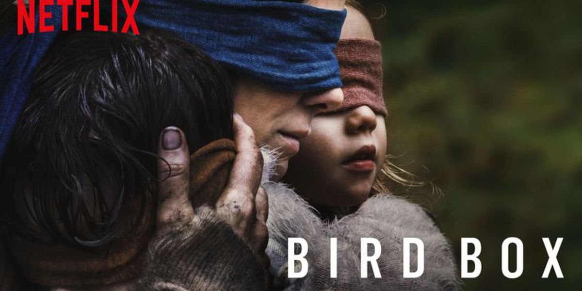 Netflix urges people to stop hurting themselves with 'Bird Box' challenge
