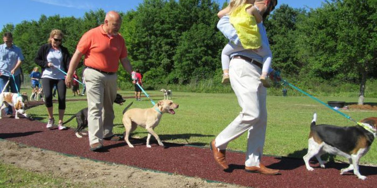 You can walk a shelter dog on HSSM's new outdoor track