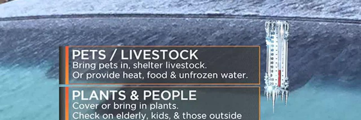 FORECAST VIDEO Nov 26 2018: Freezing temperatures overnight. Protect people, pets, and plants.
