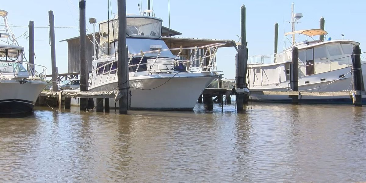 Mary Walker marina going up for auction