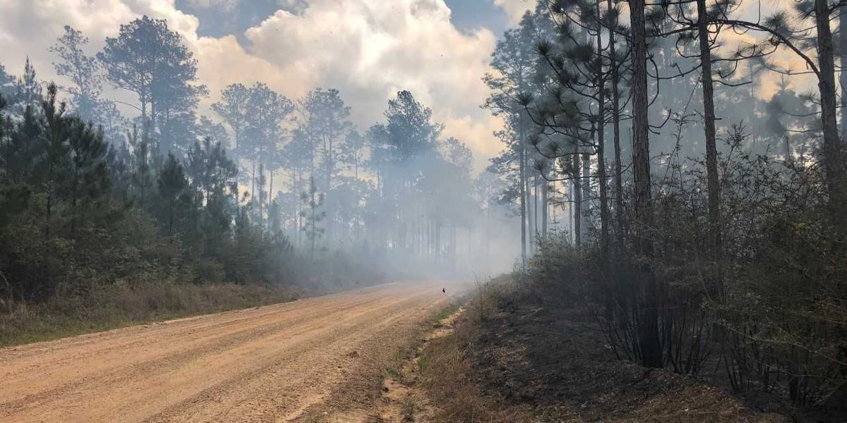 Controlled burns happening Friday in Harrison, Jackson counties