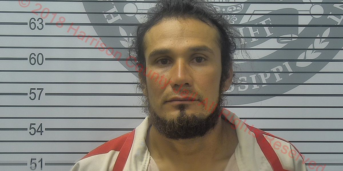 Suspect sentenced to 12 years in Pass Christian hit-and-run