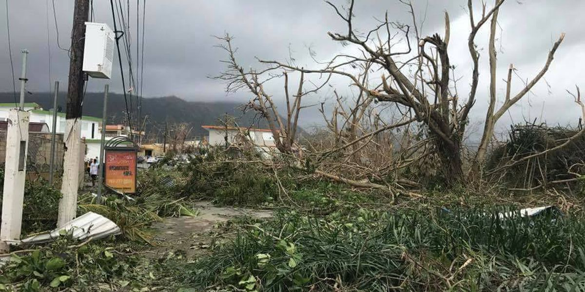 Loved ones turn to Facebook for Puerto Rico updates