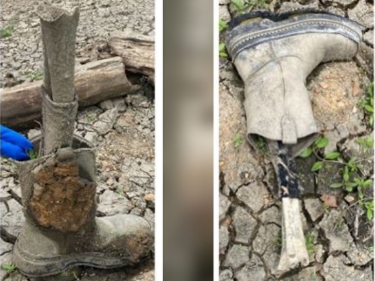 Boot with human bone still attached found on bank of Mississippi River