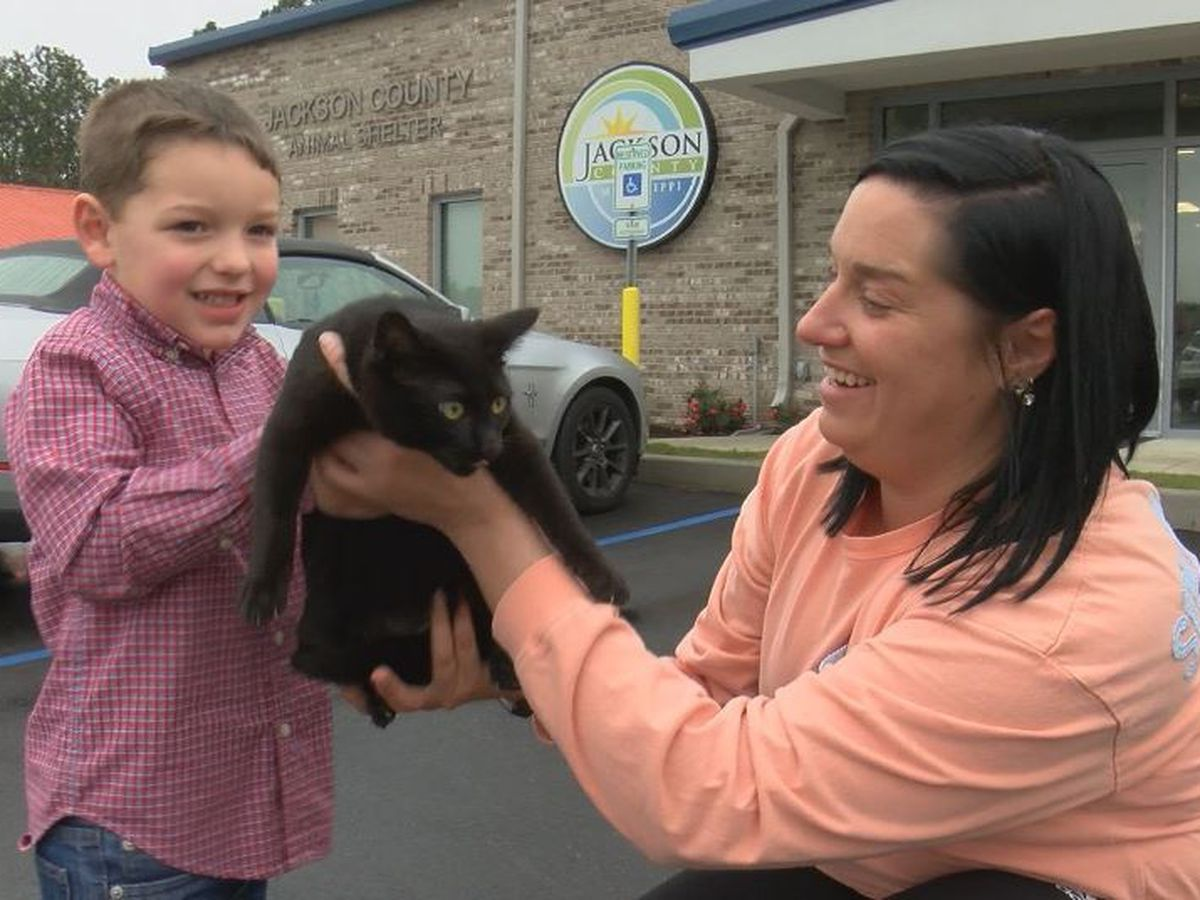 Seventeen pets find forever homes in Jackson County Animal Shelter drive