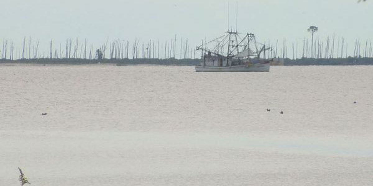 Recently reopened oyster reef closes due to rain