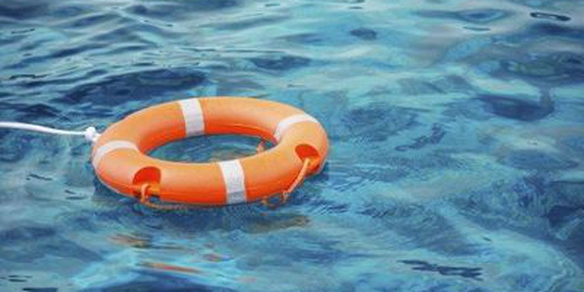 3 boaters, 3 dogs rescued after shrimp boat sinks in Pascagoula Ship Channel