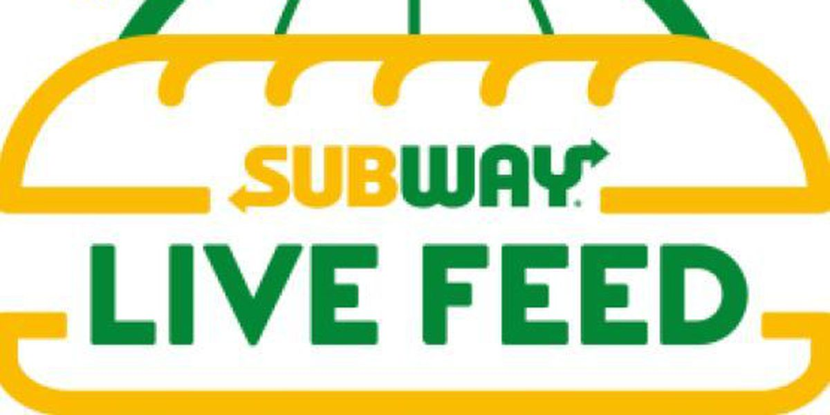 Free subs at Subway on Nov. 3 for World Sandwich Day