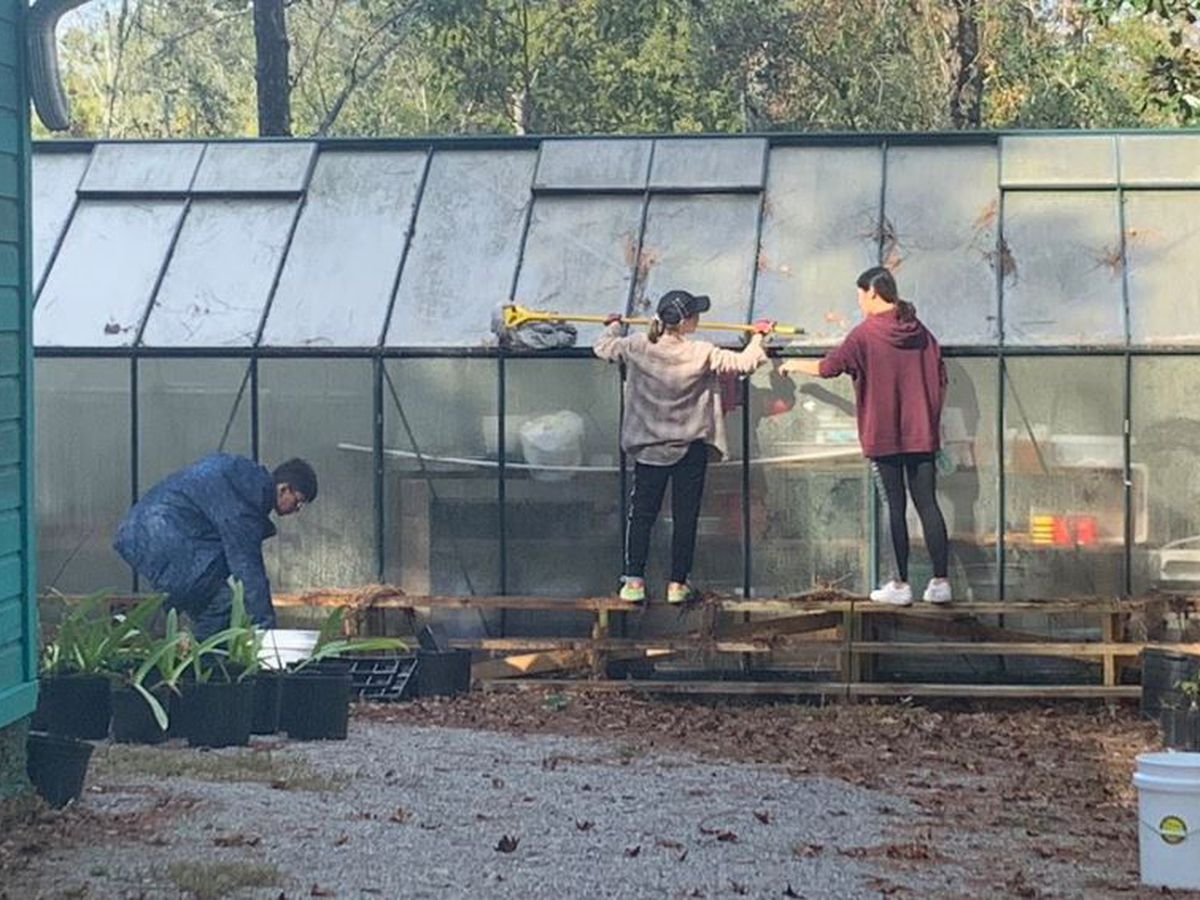 Ohio State students volunteer at Pascagoula River Audubon Center