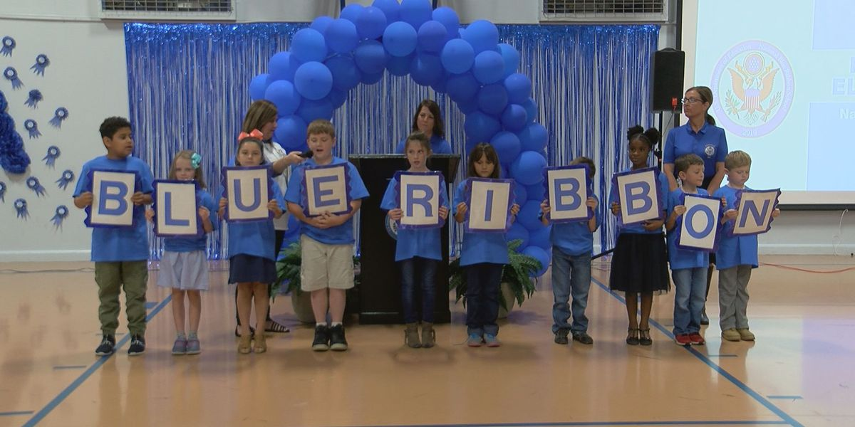 Pineville Elementary celebrates National Blue Ribbon award