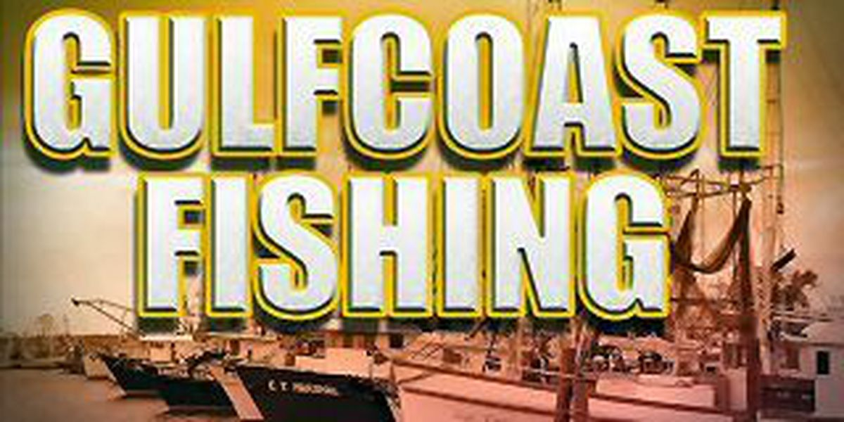 Fishing season for commercial red drum opens New Year's Day
