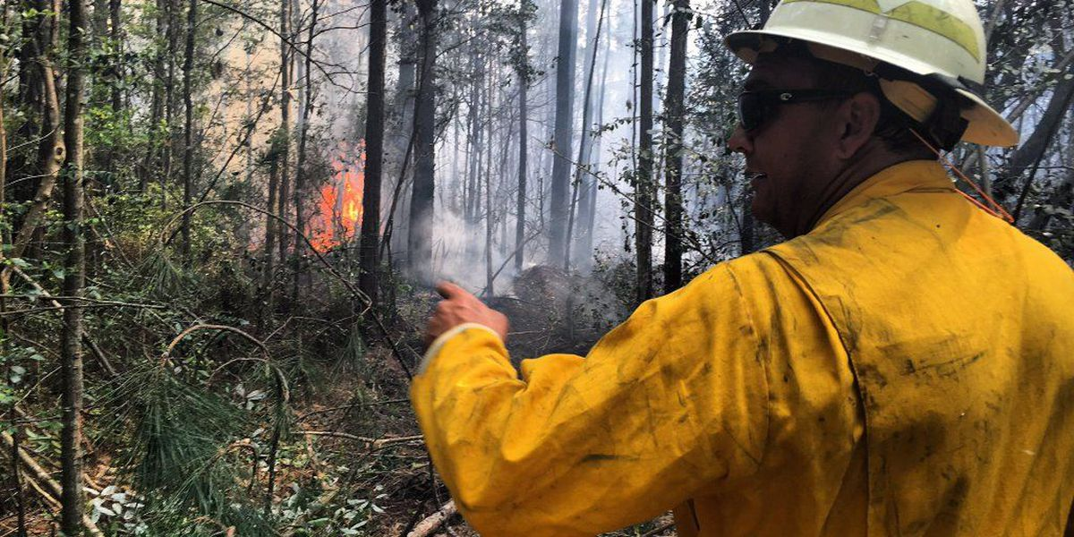 UPDATE: Gautier woods fire contained