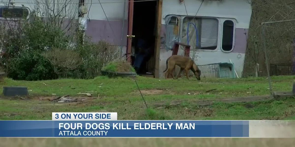 76-year-old man killed by four dogs in Attala Co.