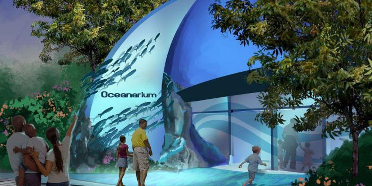 Study brings economics of Gulfport aquarium into focus