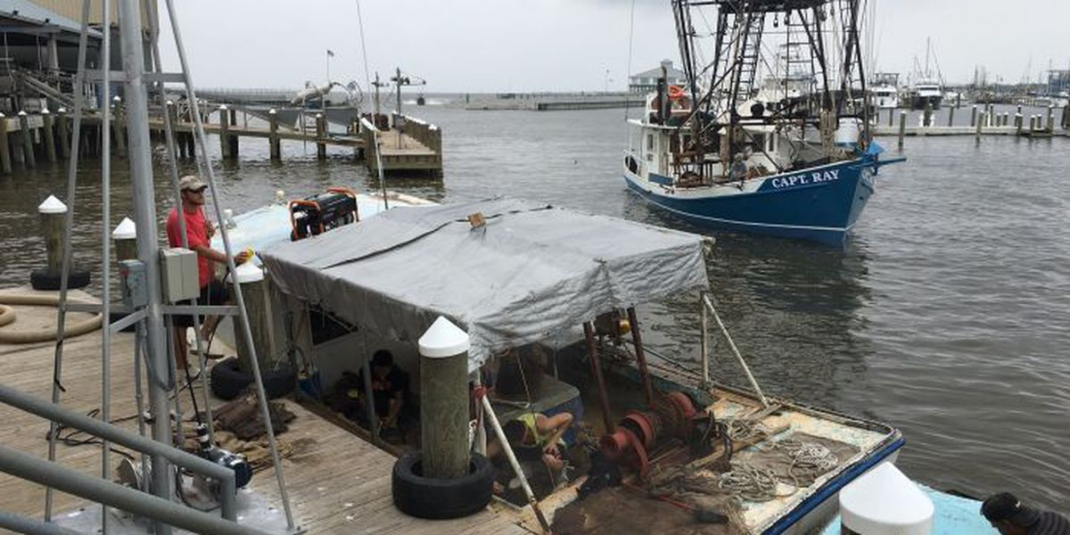 Oyster season reopens for two reefs near Pass Christian