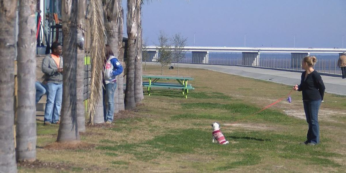 Boardwalk in Bay St. Louis may spark conversation about green space