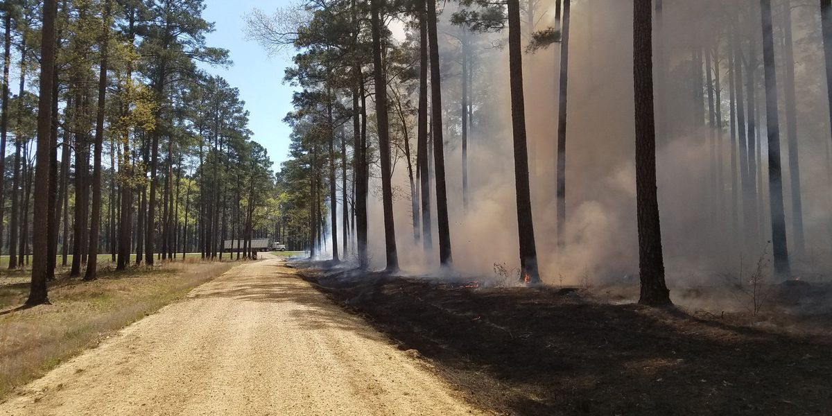 Prescribed burns planned for Harrison, Jackson counties
