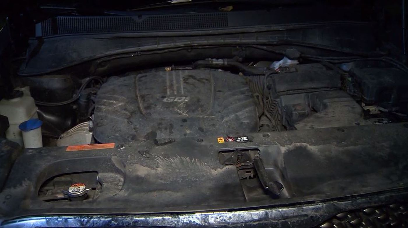 There was no damage to the car, beyond it needing a cleanup. It took about an hour to pull everything out, and the walnuts filled up half a trash can.
